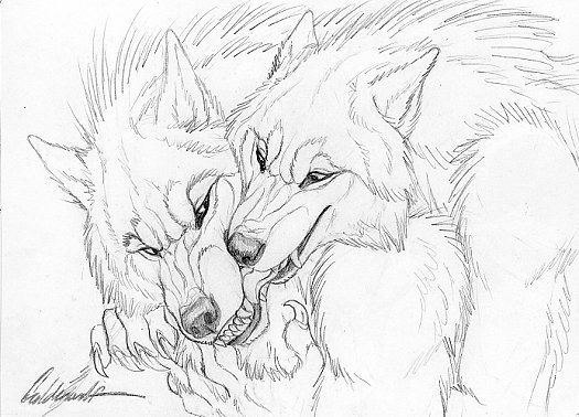 Cuddly Couples - Werewolves01 by Goldenwolf on DeviantArt