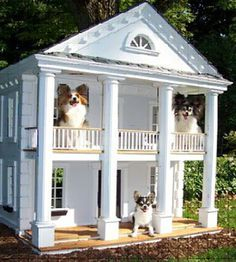 Luxury Dog Houses fancy dog houses pictures - google search | man cave | pinterest