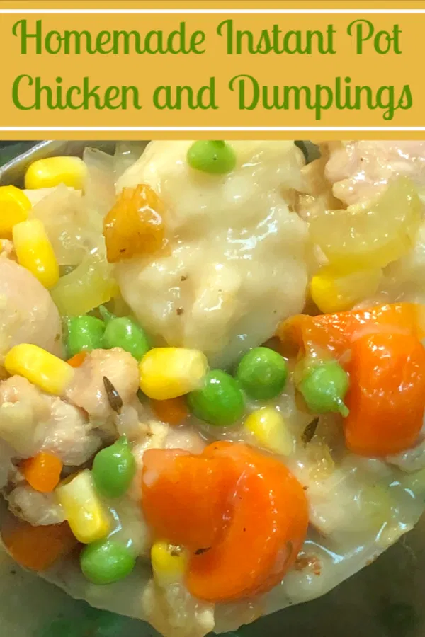 instant pot chicken and dumplings is almost too easy it