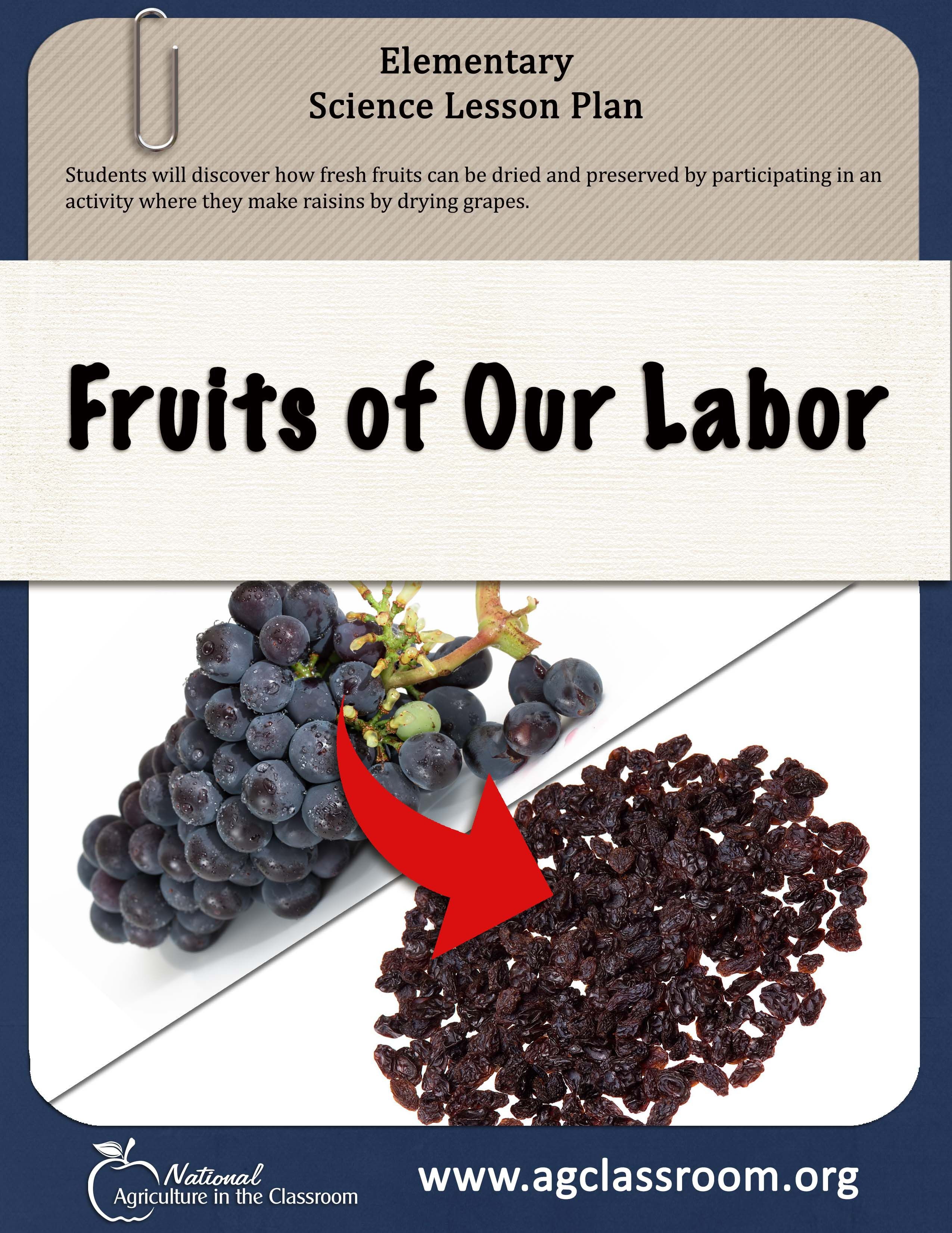 Lesson plan teaching how fresh fruits can be dried and
