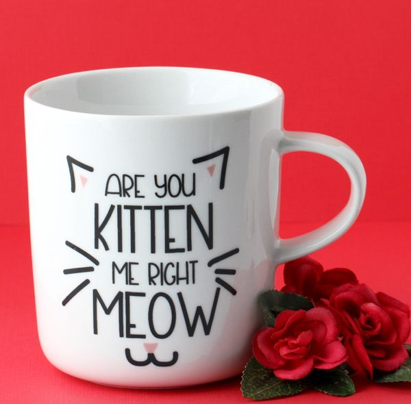 50 Cat Lover Gifts! {Purrfect Gift Ideas for Cat Lovers} - The Frugal Girls