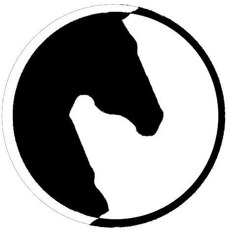 original graphic design by tamara alexis for equinox apparel the rh pinterest com Yin Yang Symbol Designs Colorful Yin Yang