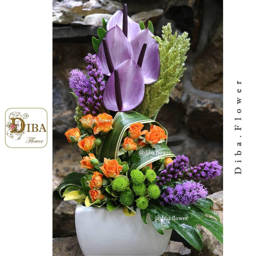 24 Gostos, 1 Comentários 🌹گل دیبا🌹 (diba.flower) no