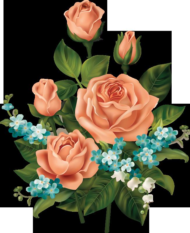 Vintage Bunga Png : vintage, bunga, Gambar, Bunga, PNG-Flower, Vintage, Frame, Download, Bunga,, Vintage,