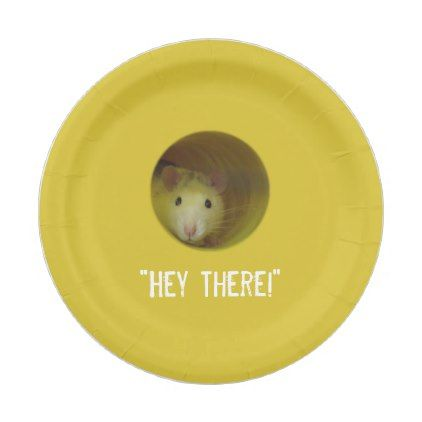 Funny Optical Illusion Rat in Hole Paper Plate - fun gifts funny diy customize personal  sc 1 st  Pinterest & Funny Optical Illusion Rat in Hole Paper Plate - fun gifts funny diy ...