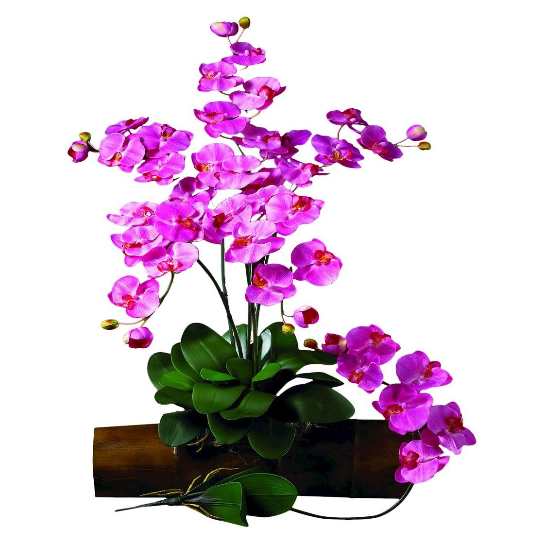 """Nearly Natural Set of 12 Artificial Orchid Stems - Dark Pink (31.5"""")"""
