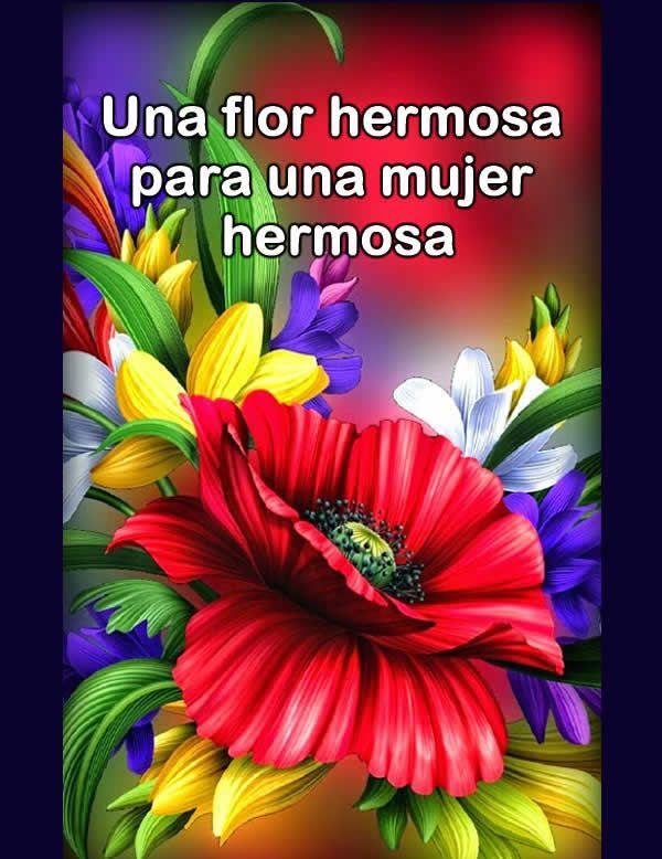 Fotos De Flores Bonitas Telenovela Targetitas Para Felicitar