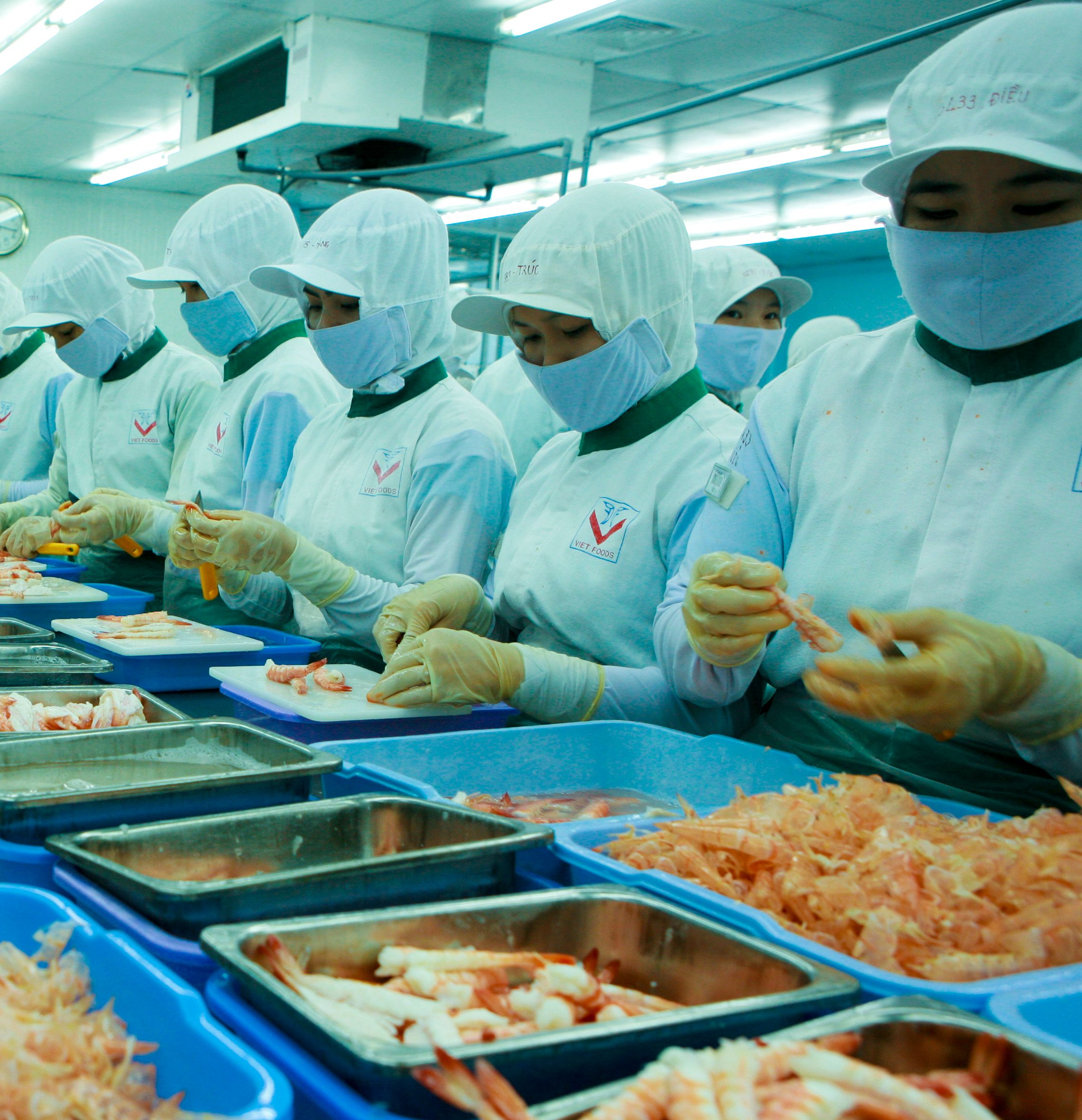 Vietnam Hau Giang Province Calls For Foreign Investment In High Technology Agriculture And Aquaculture Aqua Culture Investing Investment Tools