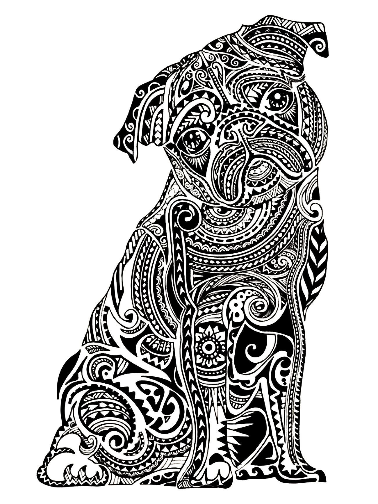 zentangle pug coloring page for adults