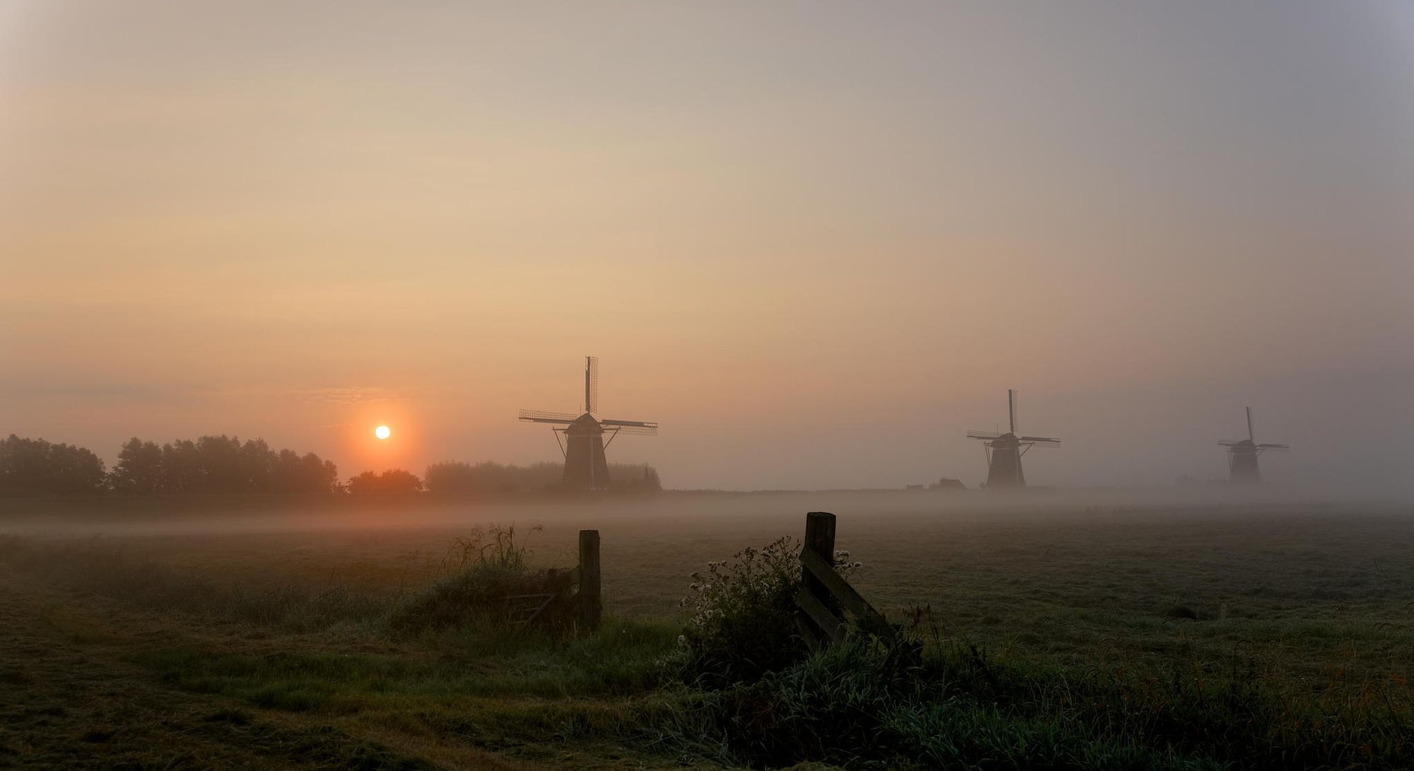 pure Dutch by John Kamstra on 500px