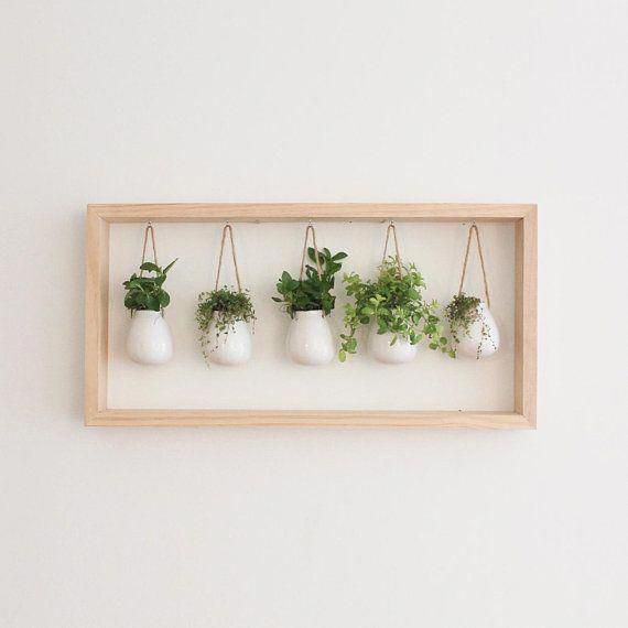 Indoor Succulent Garden in Wooden Frame | Wall Mount Planter | Air Plant Gift | Hanging Planter | Pot for Indoor Plants | Mother's Day Gift -   19 plants Beautiful planters ideas