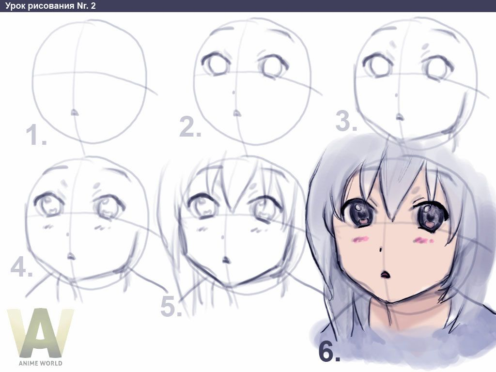 Download How To Draw Anime How To Draw Animedrawing Guidedrawing