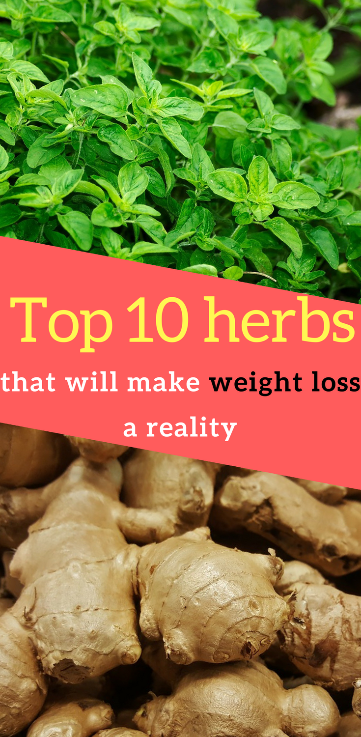 Watch 10 Healthy Herbs and How to Use Them video