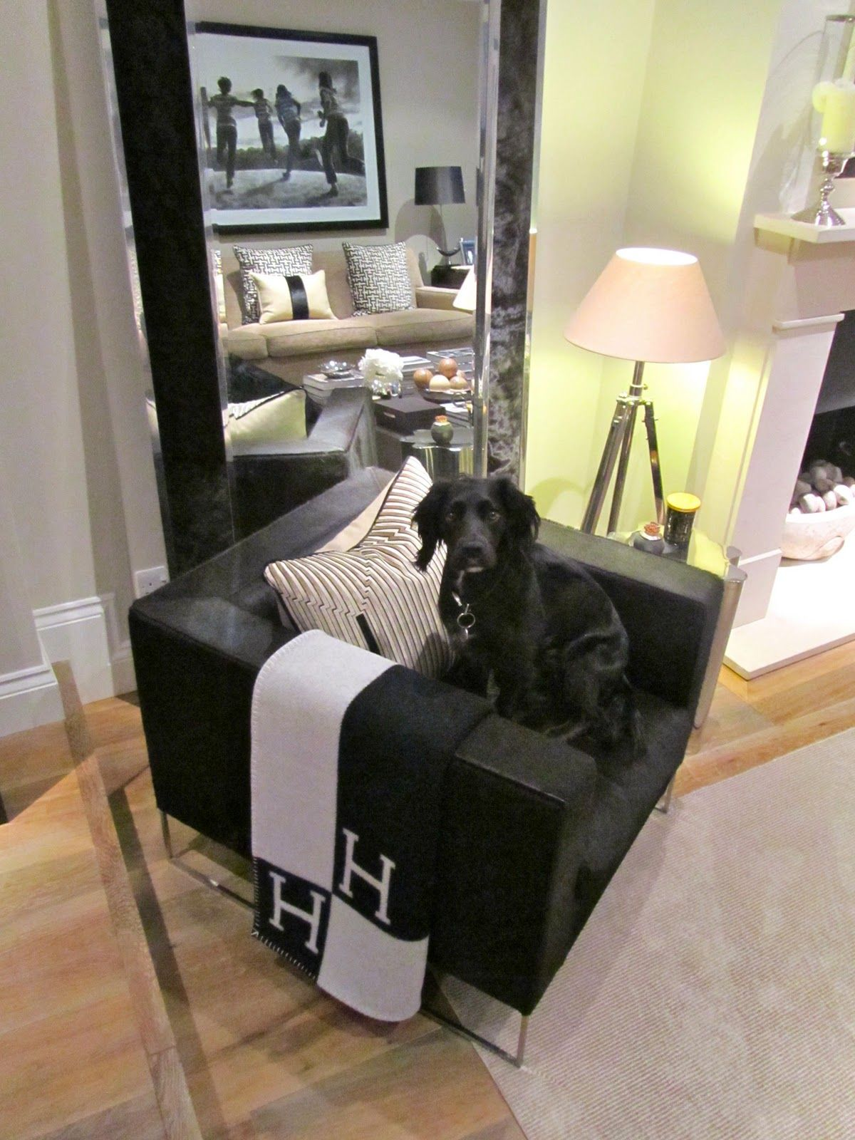 Hermes Avalon Blanket With Dog Accessory
