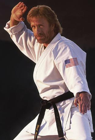 Imagini pentru chuck norris karate
