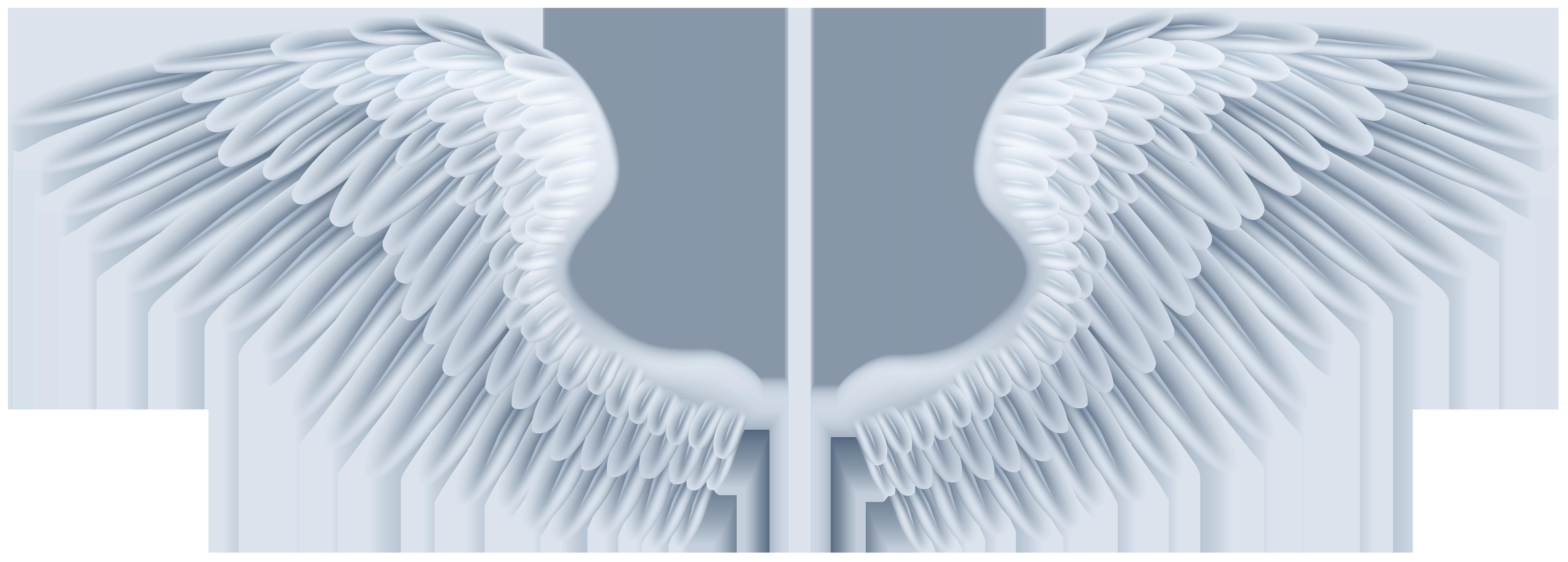 Дню свадьбы, картинки крыло ангела