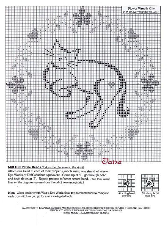 Кошки фото схемы