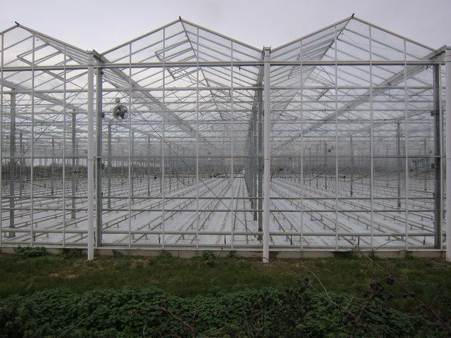 Large Greenhouse Fen Drayton By Hugh Venables Via Geograph
