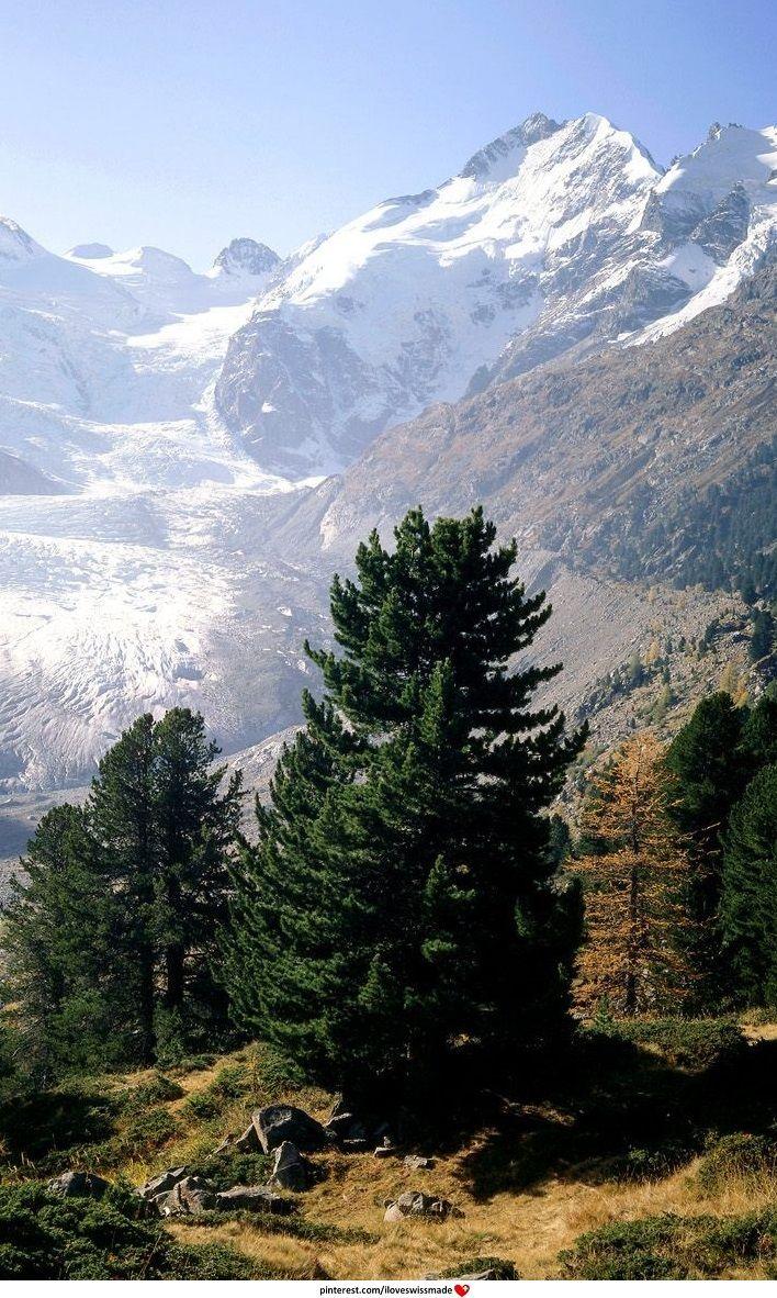 Piz Bernina and the Morteratsch Glacier. Graubünden. photo: we-traveler.com. adaptation: iloveswissmade
