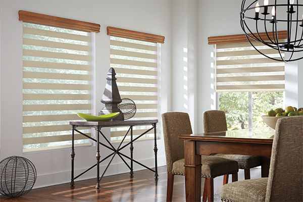 Dining Room Window Blinds Graber Blinds Layered Shades With Continuousloop Lift Aravalli