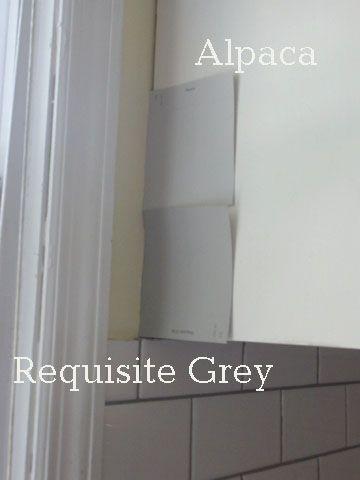 Sherwin Williams Alpaca Vs Requisite Gray
