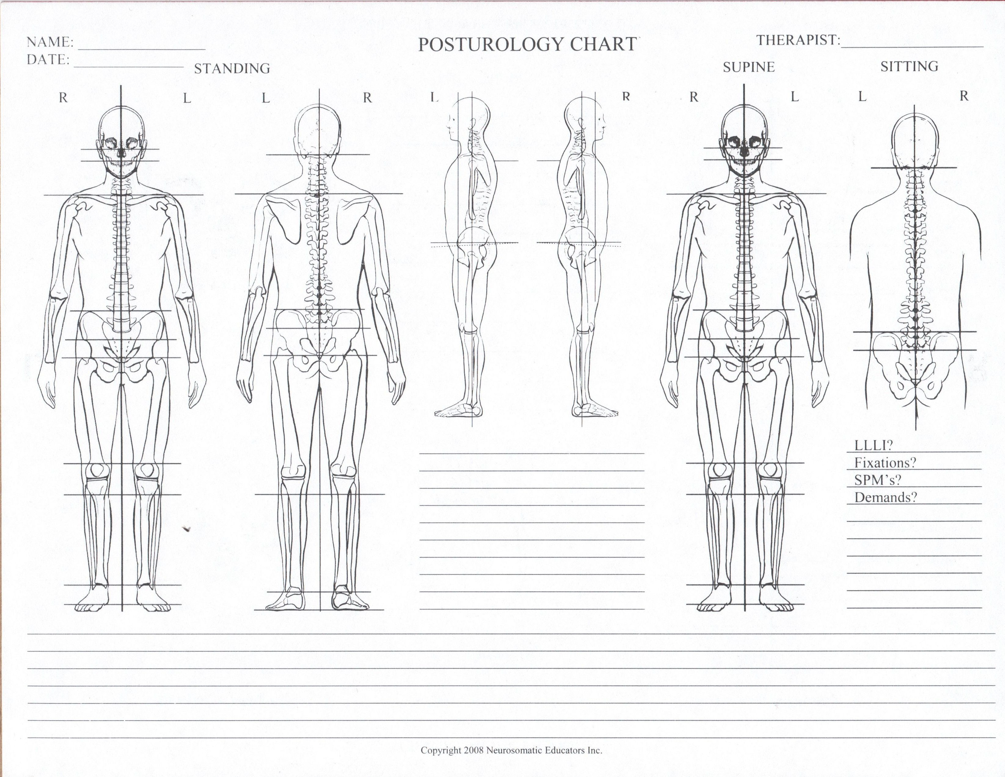 Posturology Chart Blank E 3 291 2 546