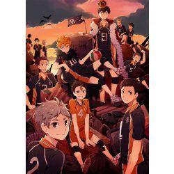 Which Haikyuu character are you? (Karasuno)