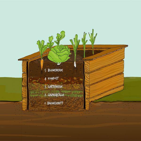 Reiche Ernte Auf Kleinem Raum Ob Lauch Karotten Gurken Oder Kohl Mit Einem Hochbeet Ist Der Gemuseanbau Kinderleicht Die A Gemuseanbau Blumenerde Garten