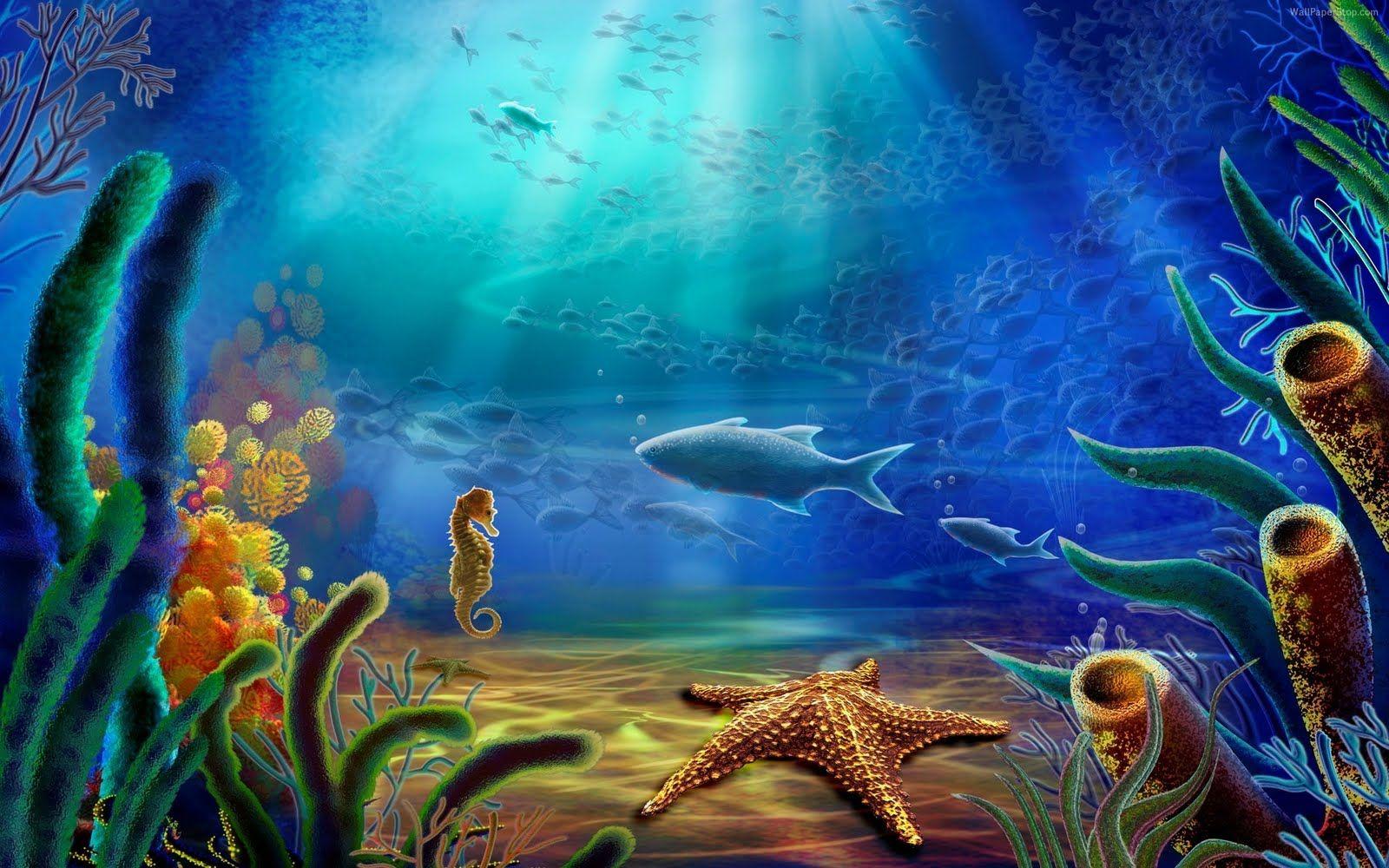 11 Ideas De Fondo Mi Pecera Pecera Arrecifes De Coral Coral Marino