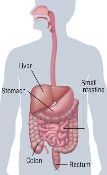 Abnormal Human Body