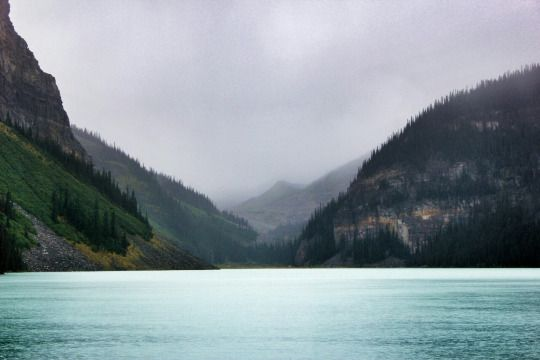 CANADA 2015 - Lake Louise, Banff National Park, Alberta //  Loving.Hamburg. | By Svenja Harder