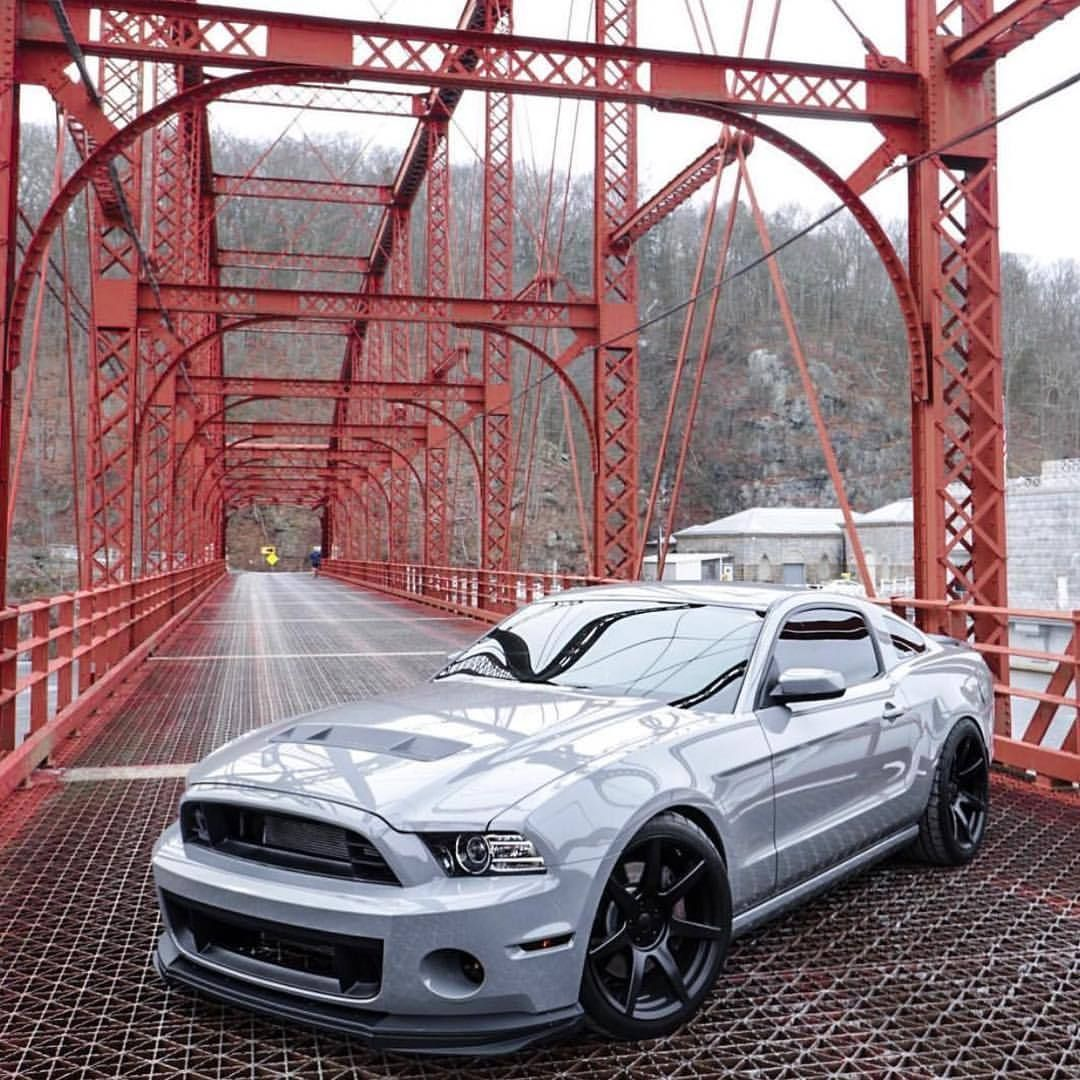 Ford Mustang Svt Tag American Muscle Mustangs Owner Glennyboyyyy Talk About Clean Ford Mustang Mustang Cars Mustang
