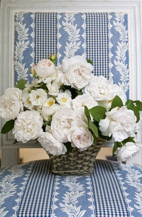 Blue and white fabric with white roses.