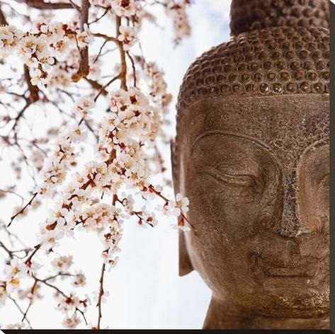 Stretched Canvas Print Buddha Face & Cherry Blossoms