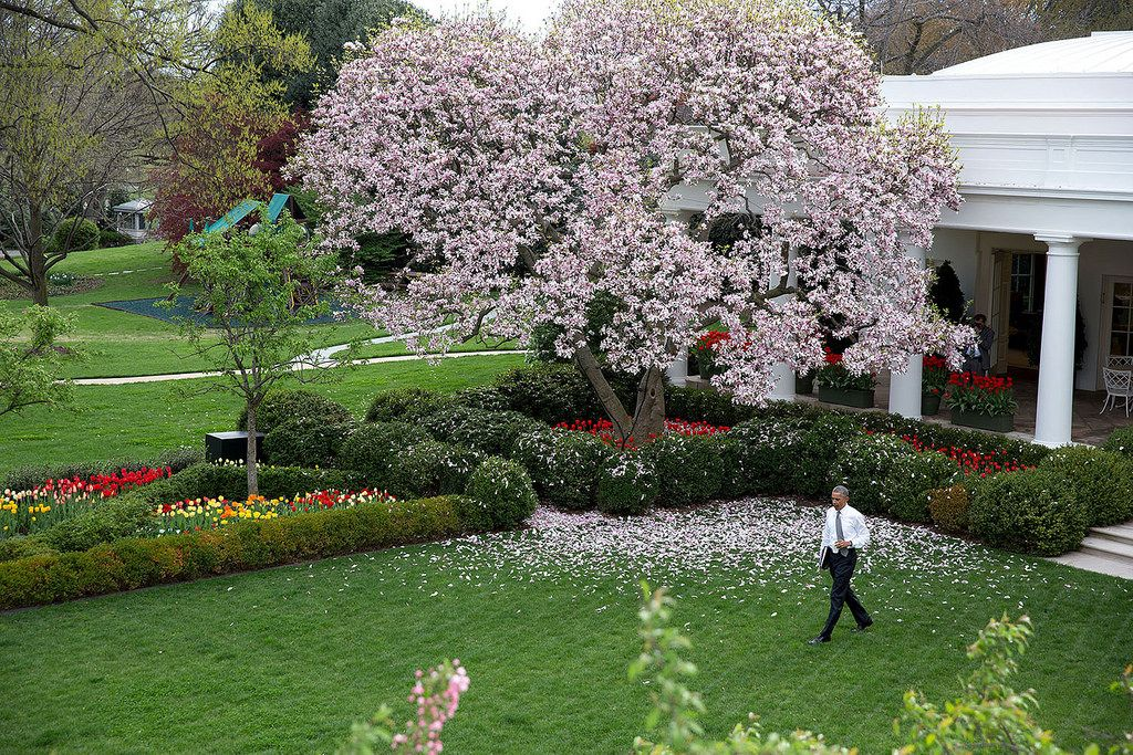 The President in the Rose Garden at the White House. (April 2015)