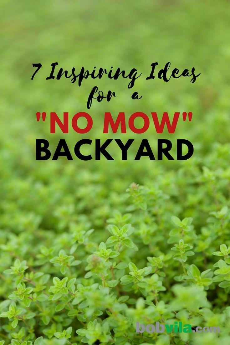 goodbye grass 13 inspiring ideas for a no mow backyard on classy backyard design ideas may be you never think id=23711