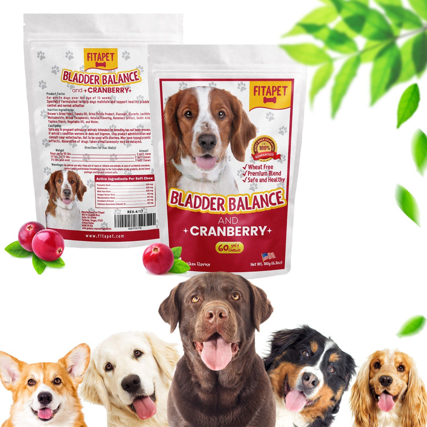 Fitapet Dog Cranberry Bladder Balance And Uti Support For Leaky Dogs Daily Maintenance Strength 60 Soft Chews Food Animals Chicken Flavors Pet Supplements