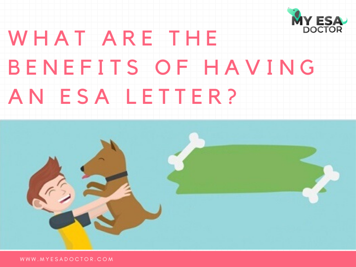 What are the benefits of having an ESA letter? in 2020