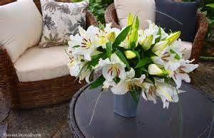 Backyard Garden Room Patio Makeover Stargazer Flowers.jpg