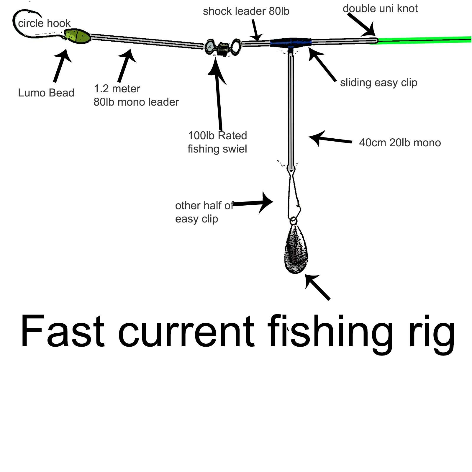 fast current fishing rig diagram   western port rig  gummy