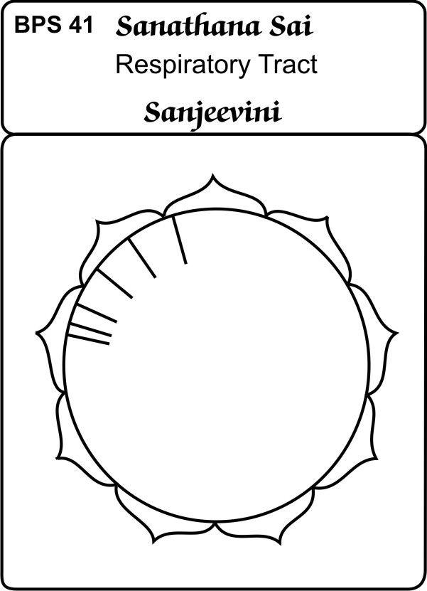 bps 41 Respiratory Tract   Sai sanjeevini cards   Healing