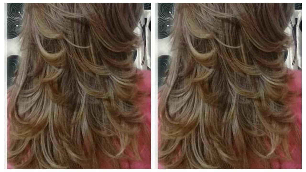 شعرك كحل وفيه الشيب صبغيه مثل الصورة تماما ميلونج بسيط بدون ديكاباج وفوق Hair Styles Long Hair Styles Hair