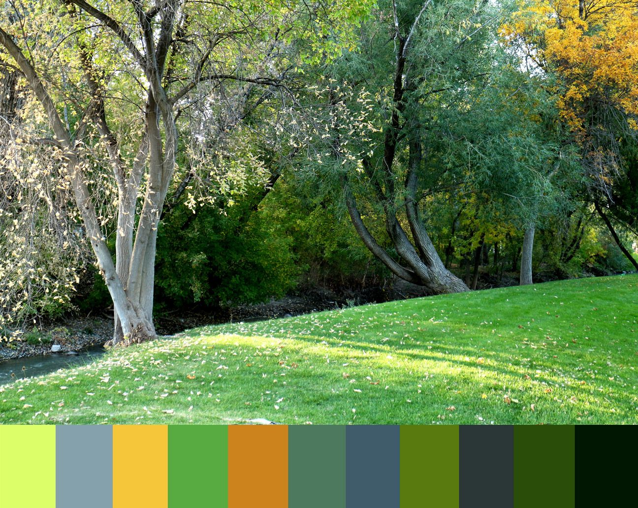 murray park october color swatch | COLOR PALETTE [1] | Pinterest