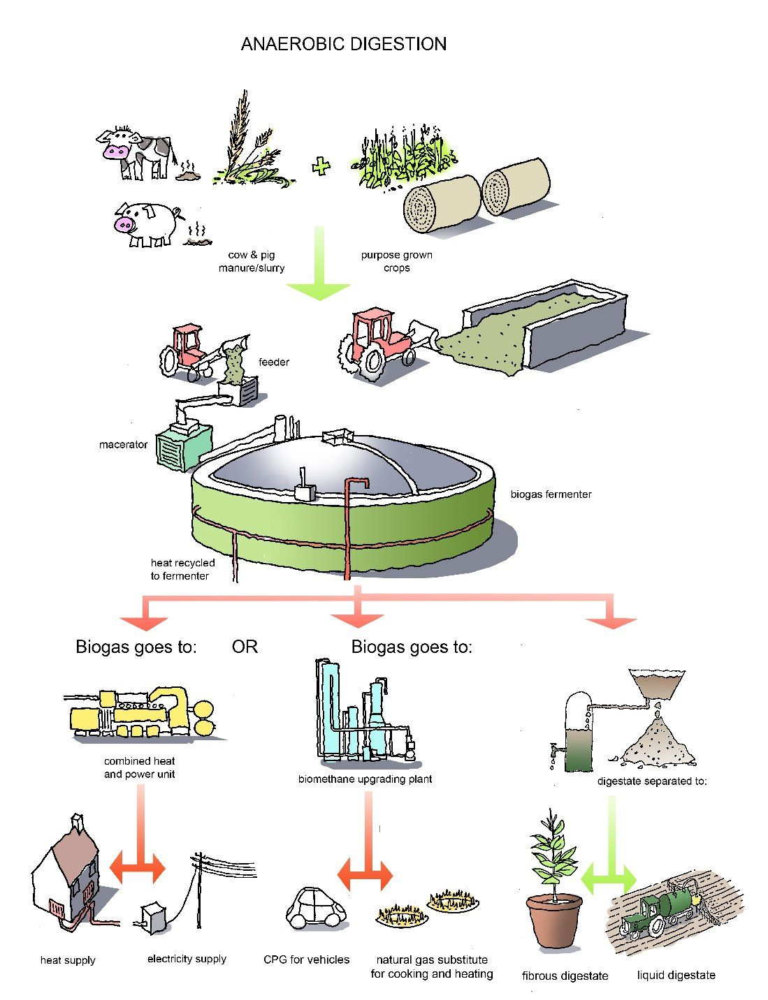 Anaerobic Digestion Ldiagram Pinterest Anaerobic Digestion