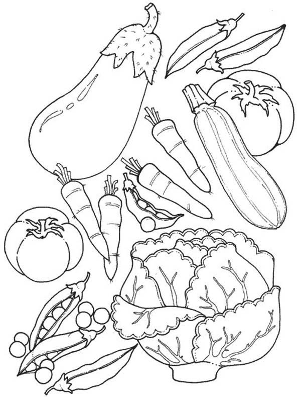 Assorted Of Fruits And Vegetables Coloring Page Kids Play Color Vegetable Coloring Pages Food Coloring Pages Fruit Coloring Pages