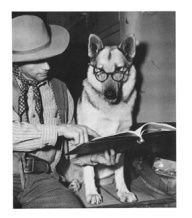 Famous dog   Rin Tin Tin reading book with owner