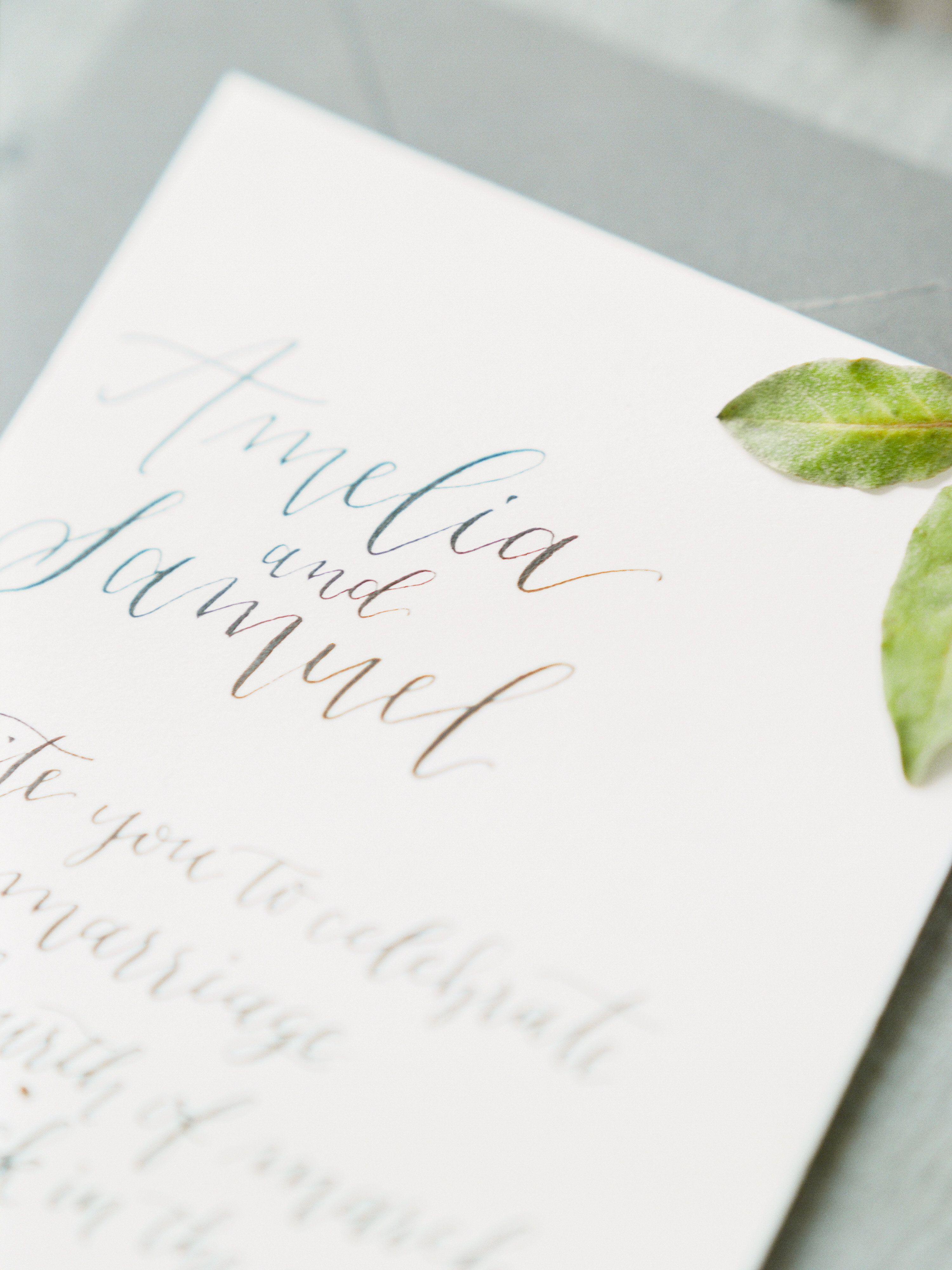 The Jacksons Photography. Columbus, Ohio Wedding Planner and ...