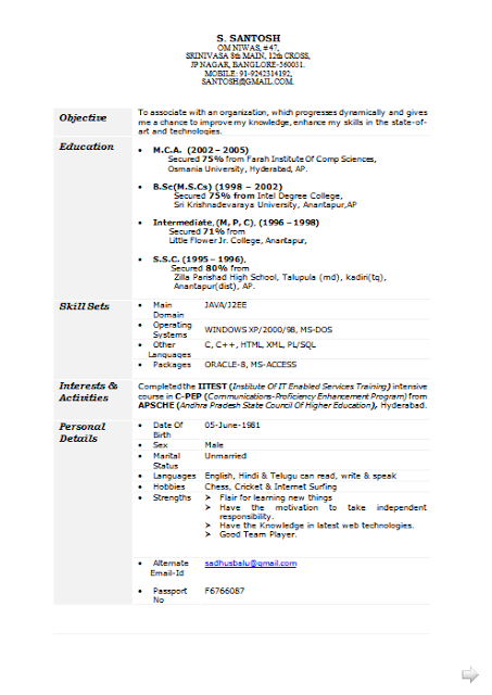 Curriculum Vitae Nederlands Free Download Sample Template