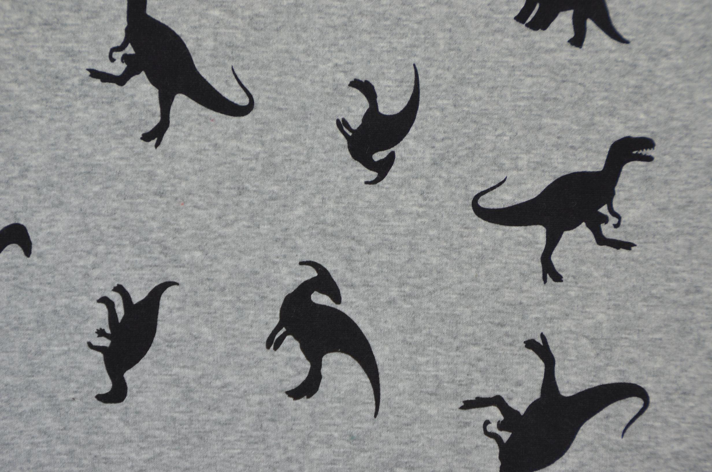Stofferia Köln alpenfleece stoff dino dinosaurier 50 x 145 cm sweatshirt fleece