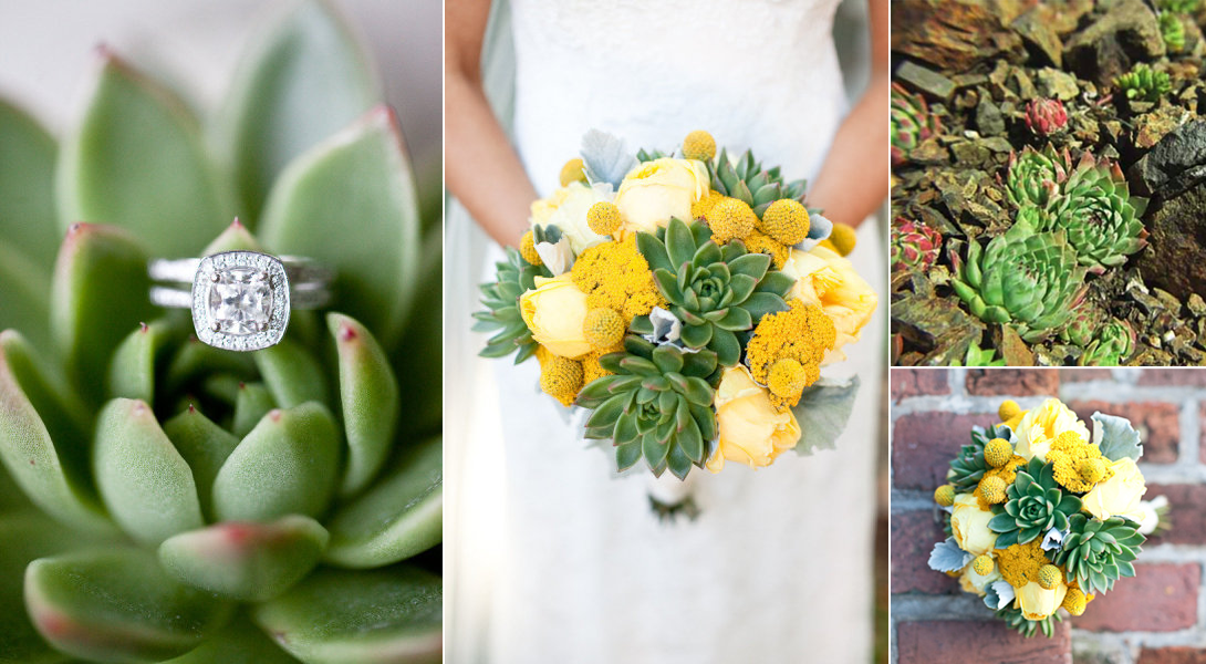 Types Of Eco Friendly Technology Succulent Wedding Flowers Ideas Onewed 1090x600